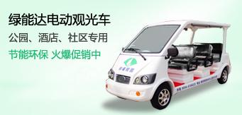 绿能达11座电动观光车